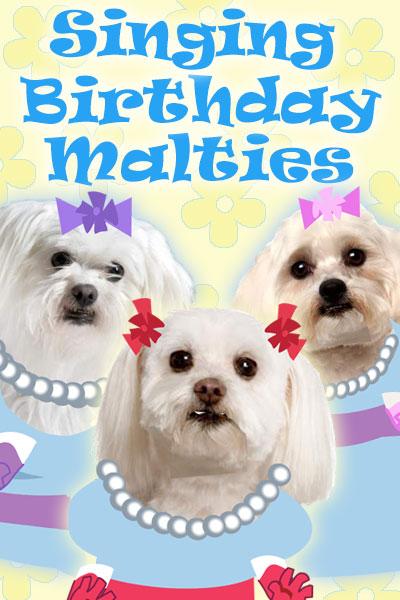 Singing Birthday Malties